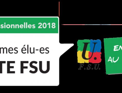 Élections professionnelles dans l'Éducation Nationale : les listes FSU