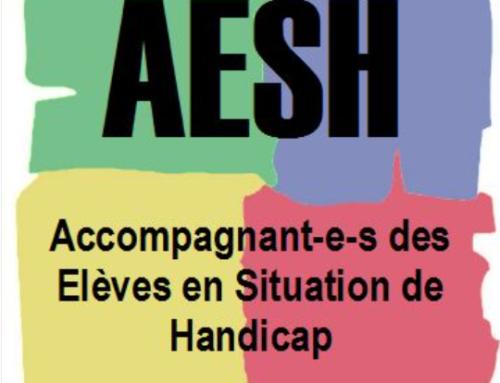 Rémunération des AESH : nouvelle grille au 1er septembre 2021